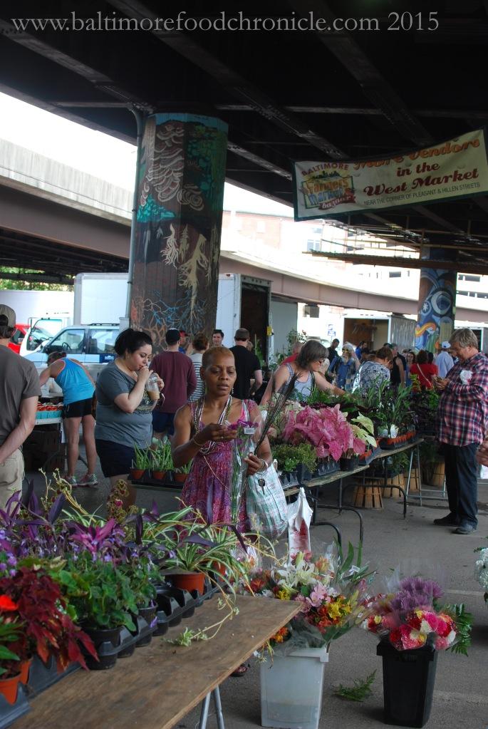 Farmer's Market 01