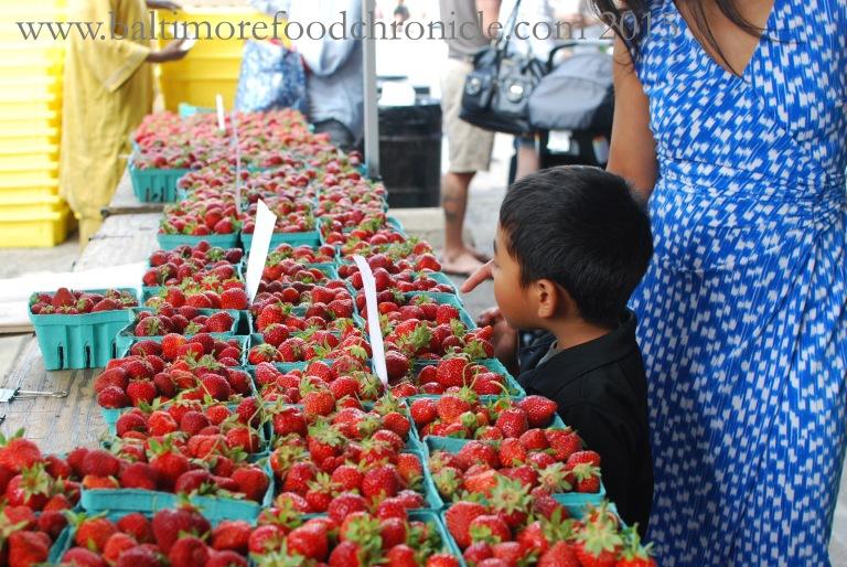 Farmer's Market 03