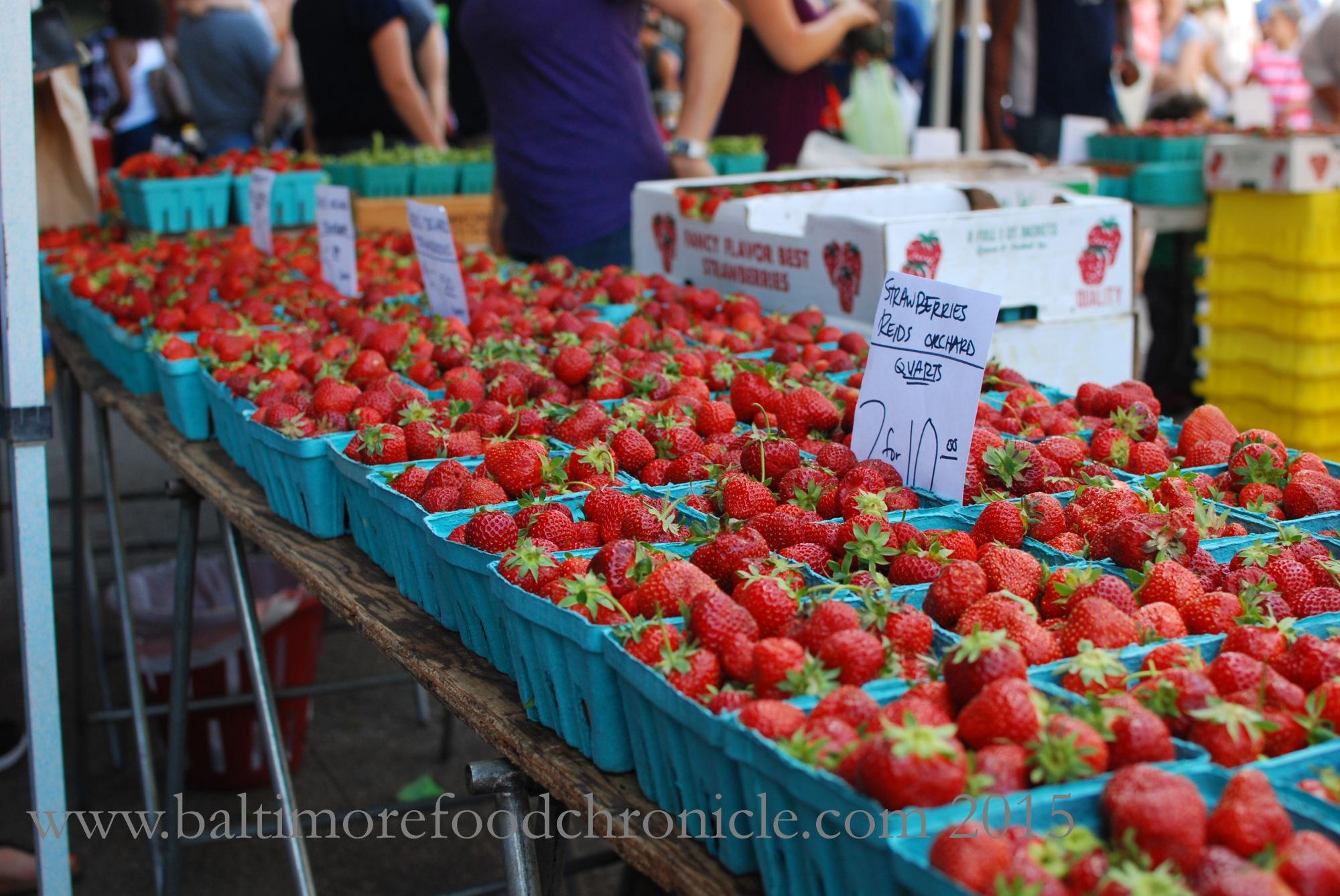 Farmer's Market 17