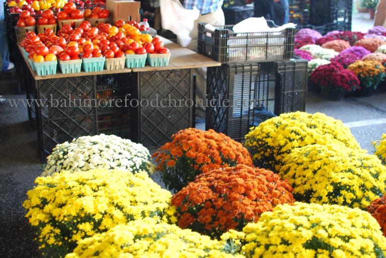Farmer's Market 23